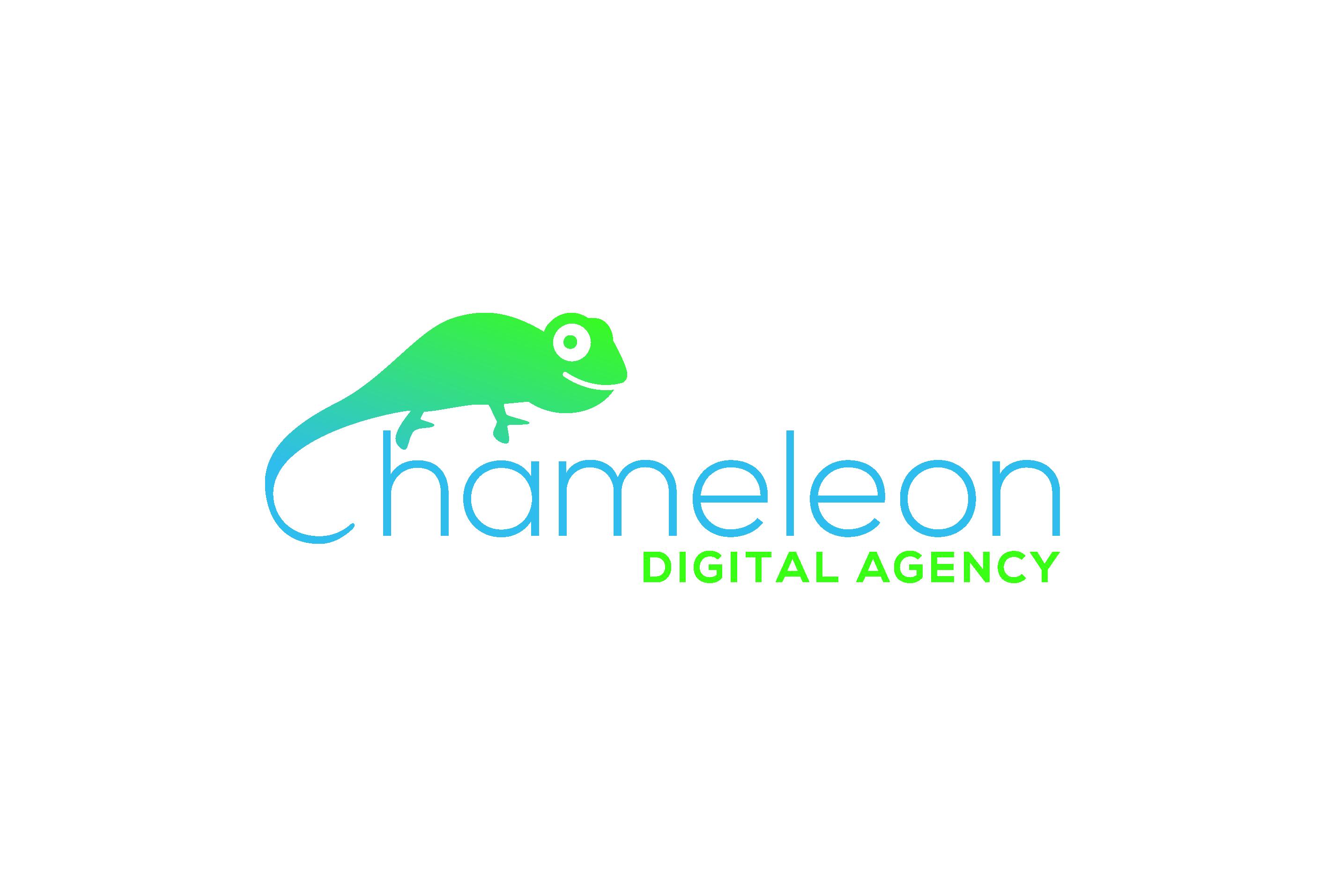 ChameleonDigital_Agency01
