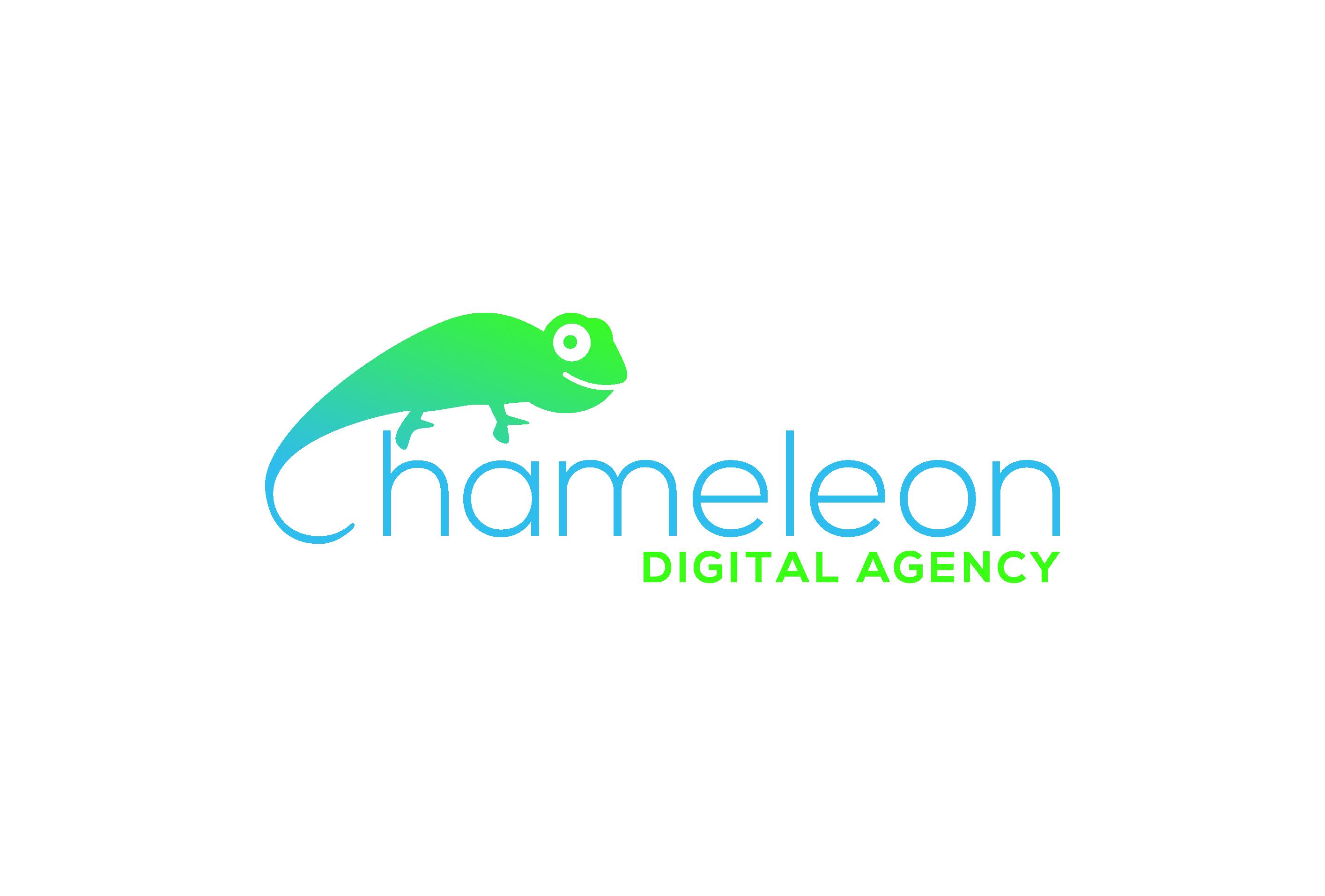 ChameleonDigital_Agency02